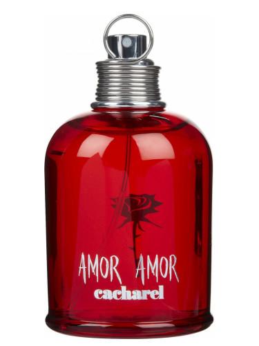 typoy-amor-amor-cacharel-xyma-aroma-image-accessories